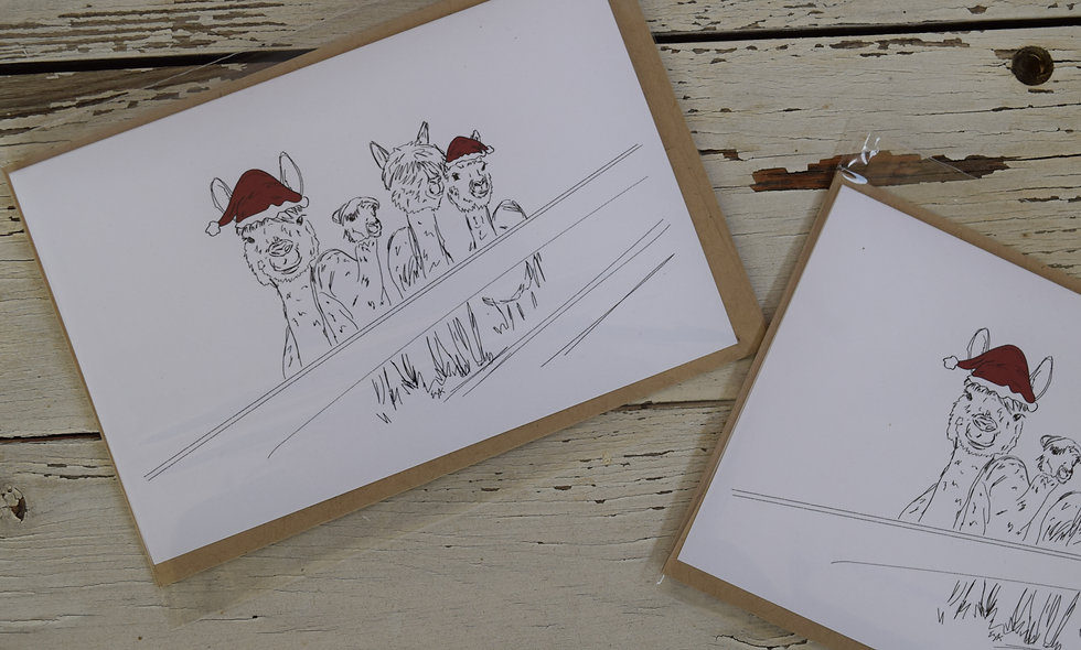"Pack of 3 Hand Sketched Alpaca Cheer 6""x 4""cards"