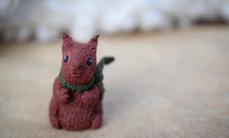 Alfanzo the red Spanish Squirrel