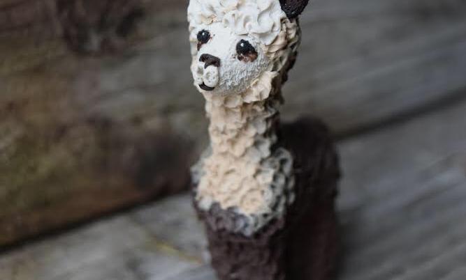 Envy Alpaca