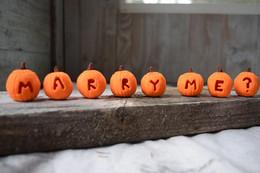 Pumpkin Proposal