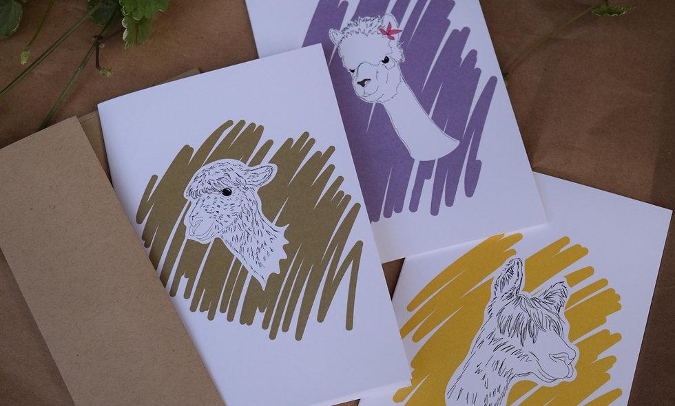 A Paca Pacas Card Pack of 4