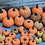 Thumbnail: Handmade Mini Clay Pumpkins