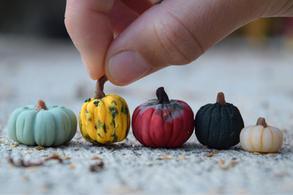 Pumpkins 2018