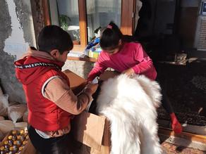 Visit to Single Mother in Lusaghbyur Village, Lori - 1.28.20