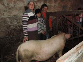 Visit to Zarik tatik and her Family - Mets Masrik - 4/30/19 — in Mets Masrik, Gegharkunik Province,