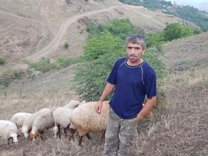 Visit to Family in Noyemberyan, Tavush Province 8/9/19