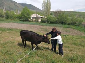 Visit to Single Mother in Areguni Village - 5/31/19
