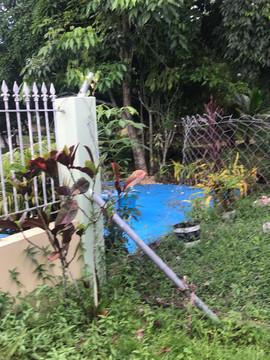 Presbytery Fence