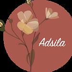 logo-adsila.png