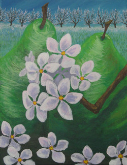 Pears: Spring