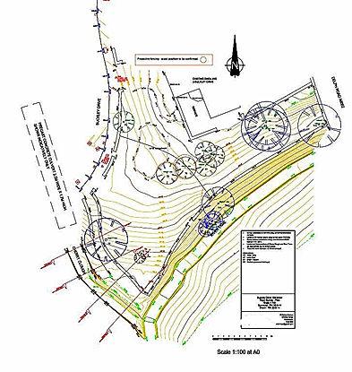BS 5837 Survey Plan