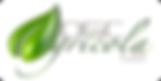 logo_MX_round_lg.png