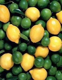 lemon:lime.jpg