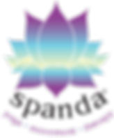 AAASpanda Logo Transparent.png