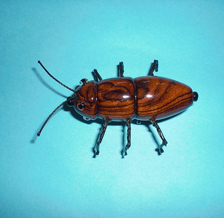 Wooden Bug Pin
