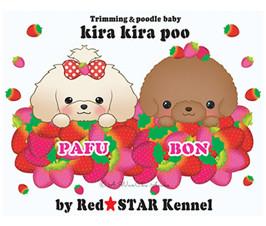 Kira Kira poo