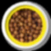 Ração_Finotrato_Gold_-_Adultos_RGG.png