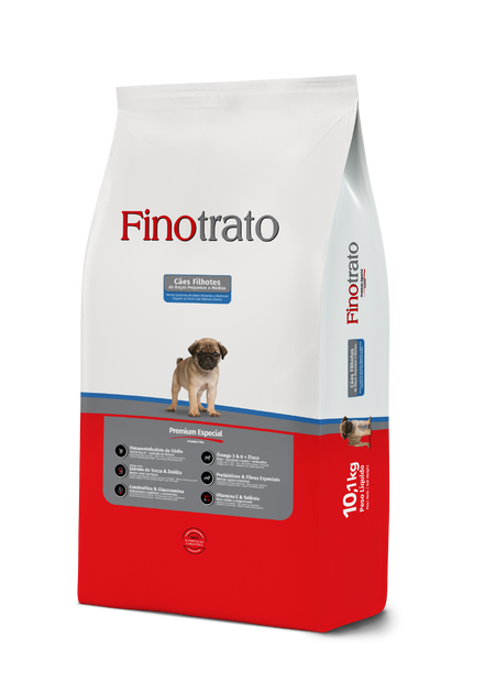 Finotrato Puppies - Puppies of SMB