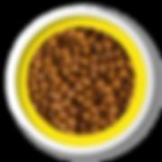 Ração_Finotrato_Gold_-_Adultos_RM.png