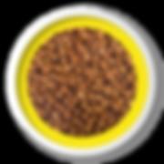 Ração_Finotrato_Gold_-_Adultos_RMP.png