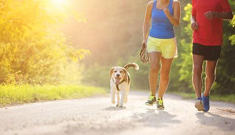 lifestyle - jogging.jpeg