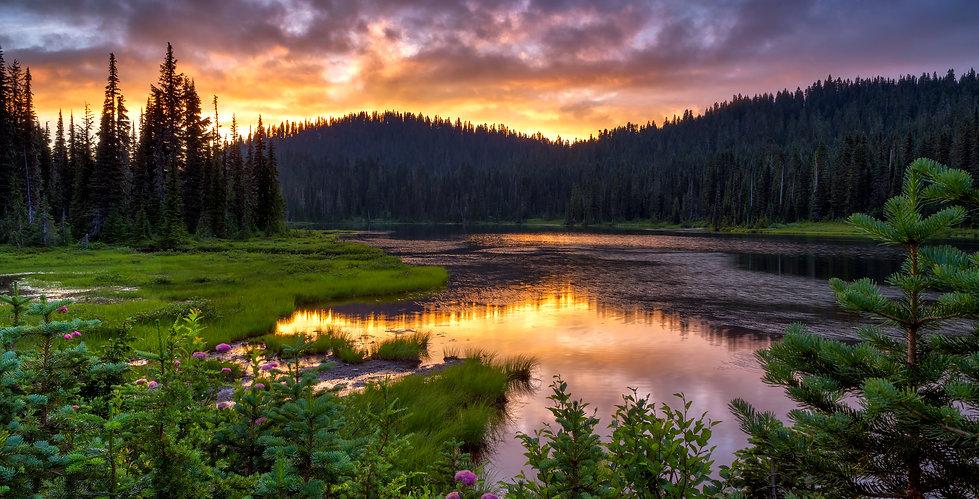 WA - Lake.jpeg