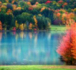 PA- Lake.jpeg