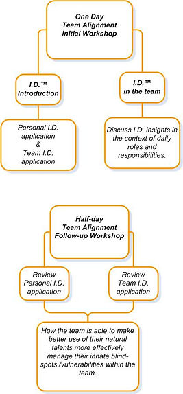Disruptive Leadership Programs