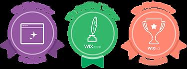 NB Media Solutions | Grand Rapids, MI | Wix Webmaster