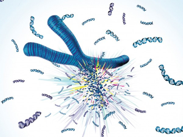 Artist's conception of shattering chromosome - courtesy of Science Magazine.
