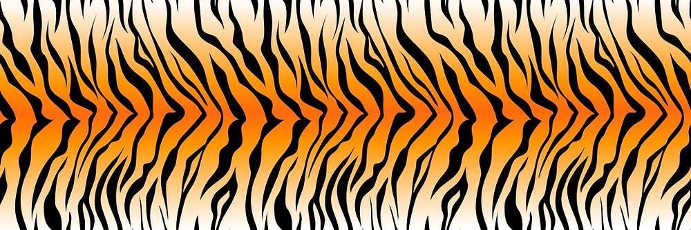 Tiger King | Tiger Print