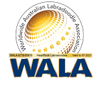HeartRock WALA Logo 2021.png