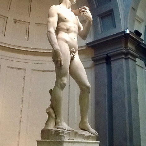Michelangelo David, Accademia