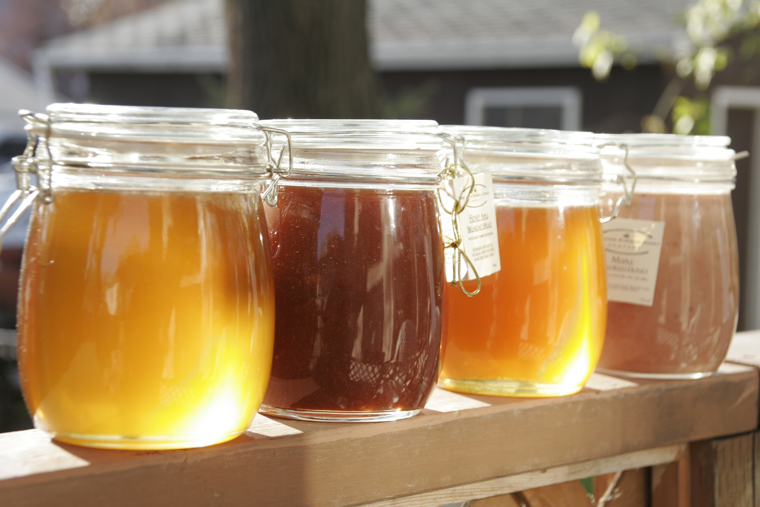 Holiday in Ikaria - Honey tasting