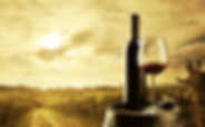 Ikaria holidays - Gastronomy - Wine tasting