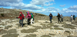Guided hiking and trekking tours