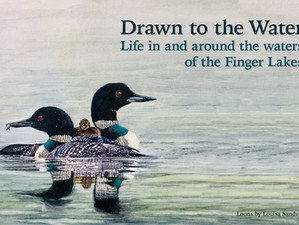 Drawn to the Water: Life in and around the Waters of the Finger Lakes