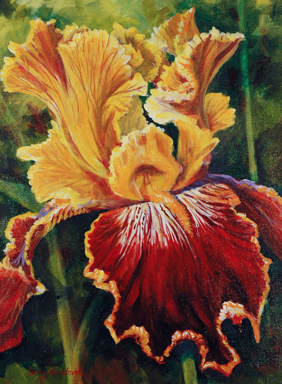 Yellow and Gold Iris