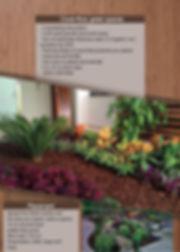 mulch-cubre-suelo-espacios-verdes.jpg