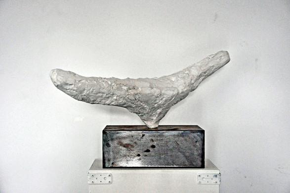 Forma n.1