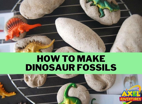 How to Make Dinosaur Fossils