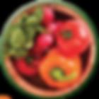 CN_logo_Essential_FINAL_edited.png