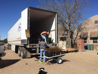 First Shipment of Trees & Shrubs Has Arrived!