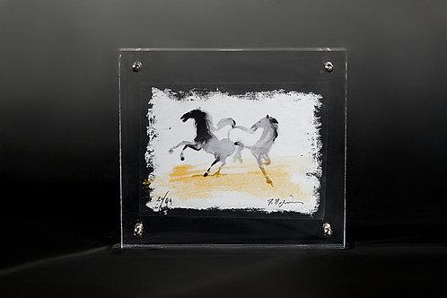 Άλογα / Horses