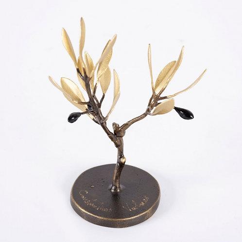 Ελιά / Olive Tree