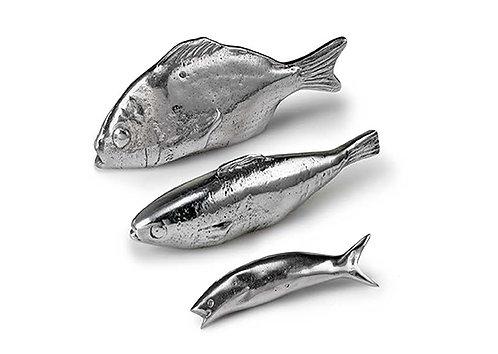 Διακοσμητικά ψάρια / Decorate Fishes