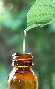 essential-oil-5982237_640.jpg