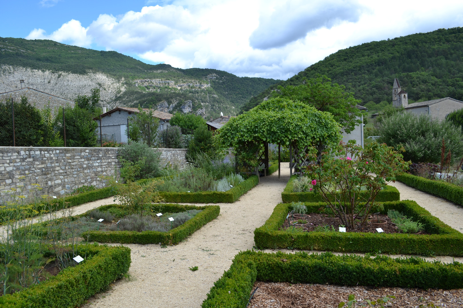 Botanical garden in the monastery