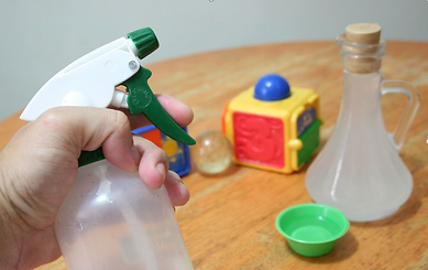 Disinfect toys.png