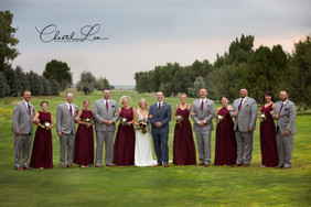 WeddingParty_logo.jpg